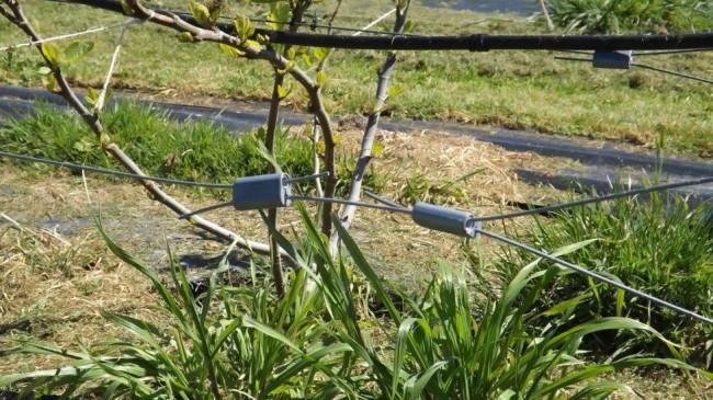 Wirelok wire joiners